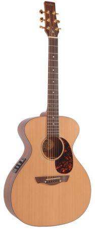 Vintage GG signature guitar